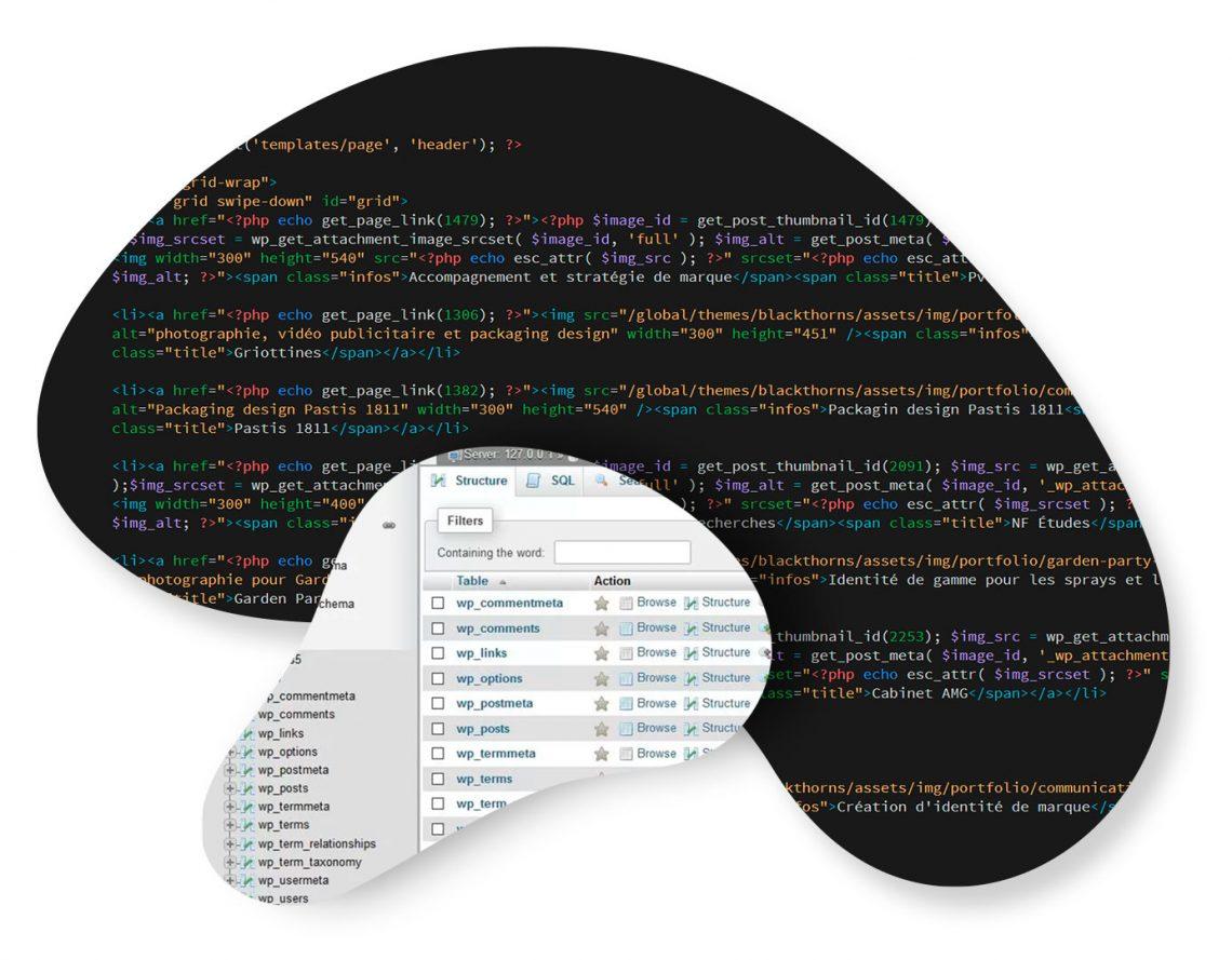 Développement Web : HTML, PHP, SQL