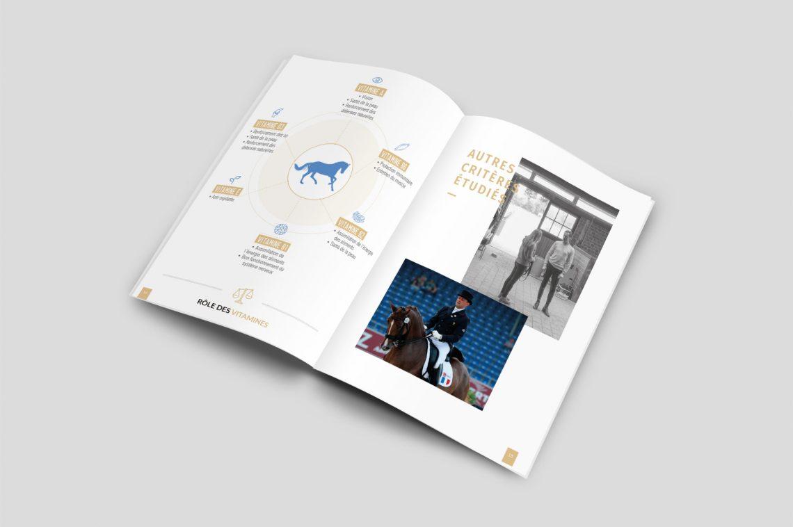 Identité visuelle brochure