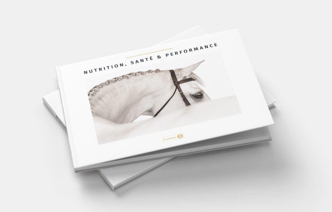 Mise en page d'un livre scientifique